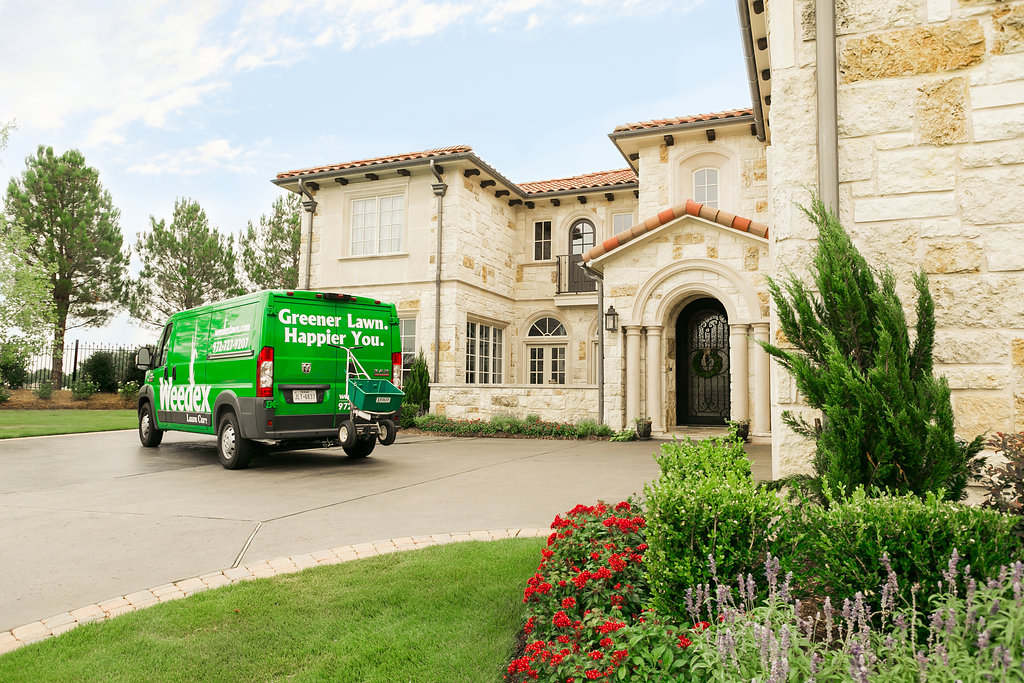 Weedex Lawn Care reviews | 250 E Valley Ridge Boulevard - Lewisville TX