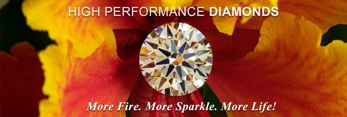 HIGH PERFORMANCE DIAMONDS reviews | 7790 W Mossy Cup Street - Boise ID